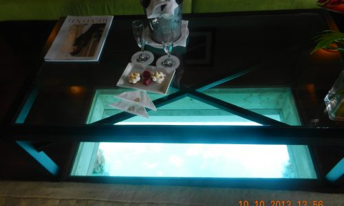 St Regis Bora Bora Glass Floor