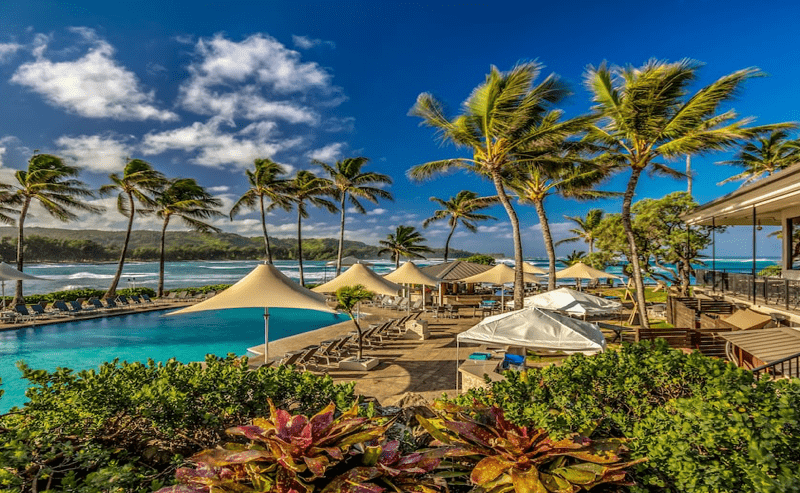 turtle bay hawaii