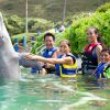 Sea Life Park Hawaii kids